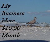For about 1/2 cent a day you can have your business listed here on Bizboro.com ....Links on four categories....Banner on our banners page.Listed in all major search engines....Keywords of your choice..Ultimate 24 hour advertising....The web surfer comes to you from the keywords they select.